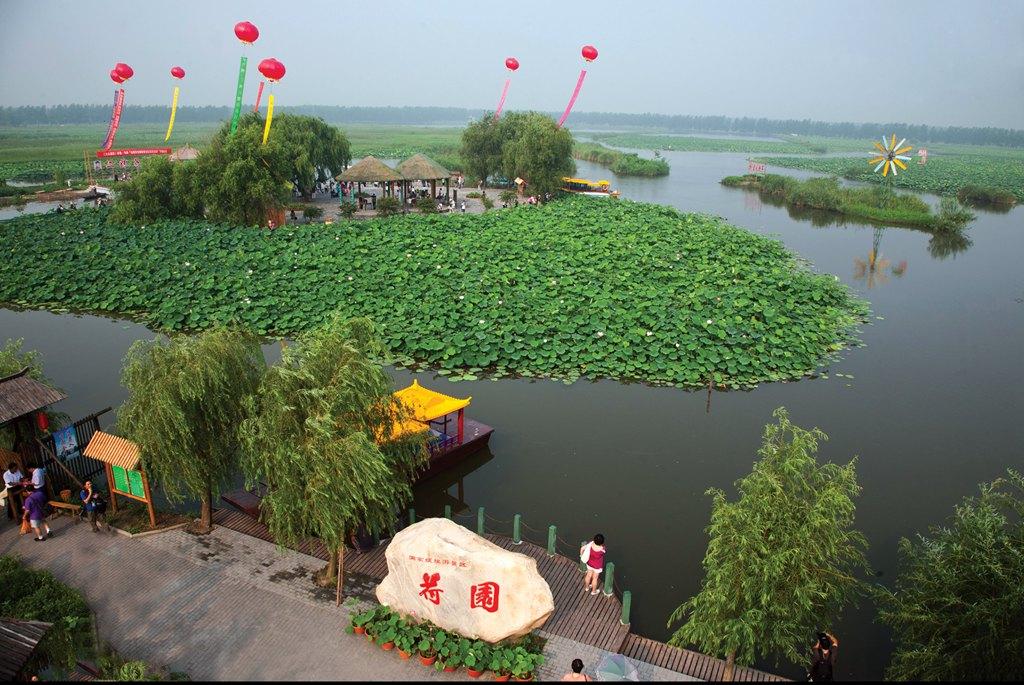 扬州市廉政文化景点——荷园